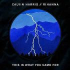 This Is What You Came For – Calvin Harris feat. Rihanna