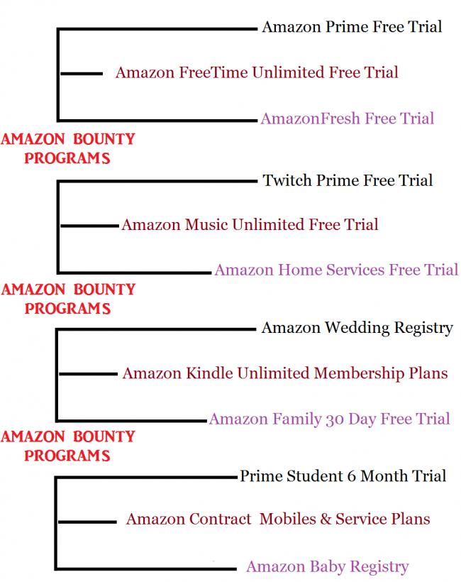 What is Amazon Bounty Program?