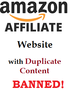 amazon affiliate website with duplicate content, banned