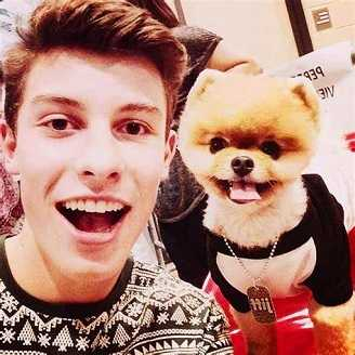 Shawn Mendes is allergic to dogs