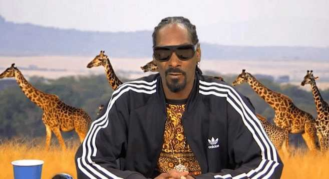 Snoop Dogg is a quiet personality